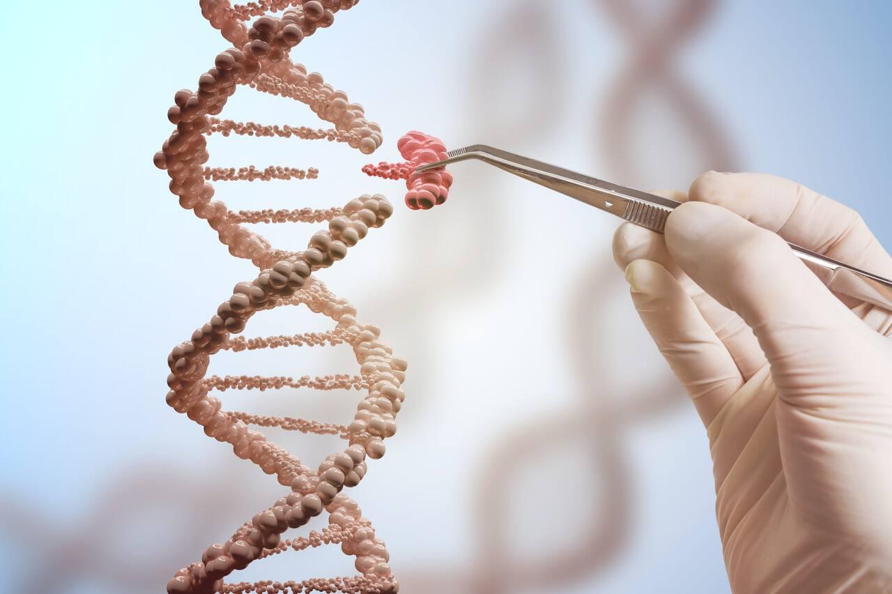 """基因治疗药物研发商""""诺洁贝""""获3000万美元A轮融资"""